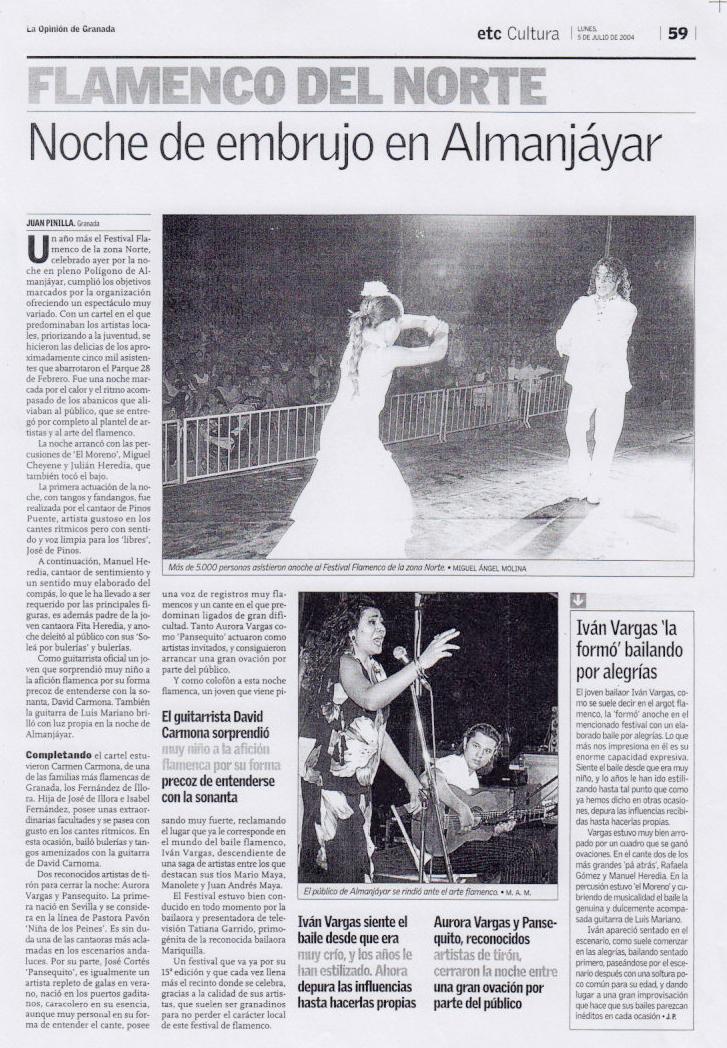 Opnion-Flamenco-del-norte